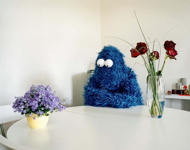 Cosplay-Cookie-Monster-01